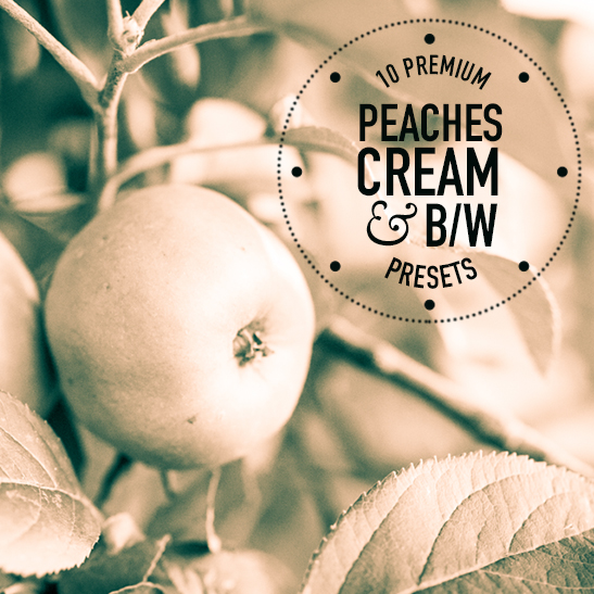 Peaches Creme BW Pack of 10 Lightroom Presets
