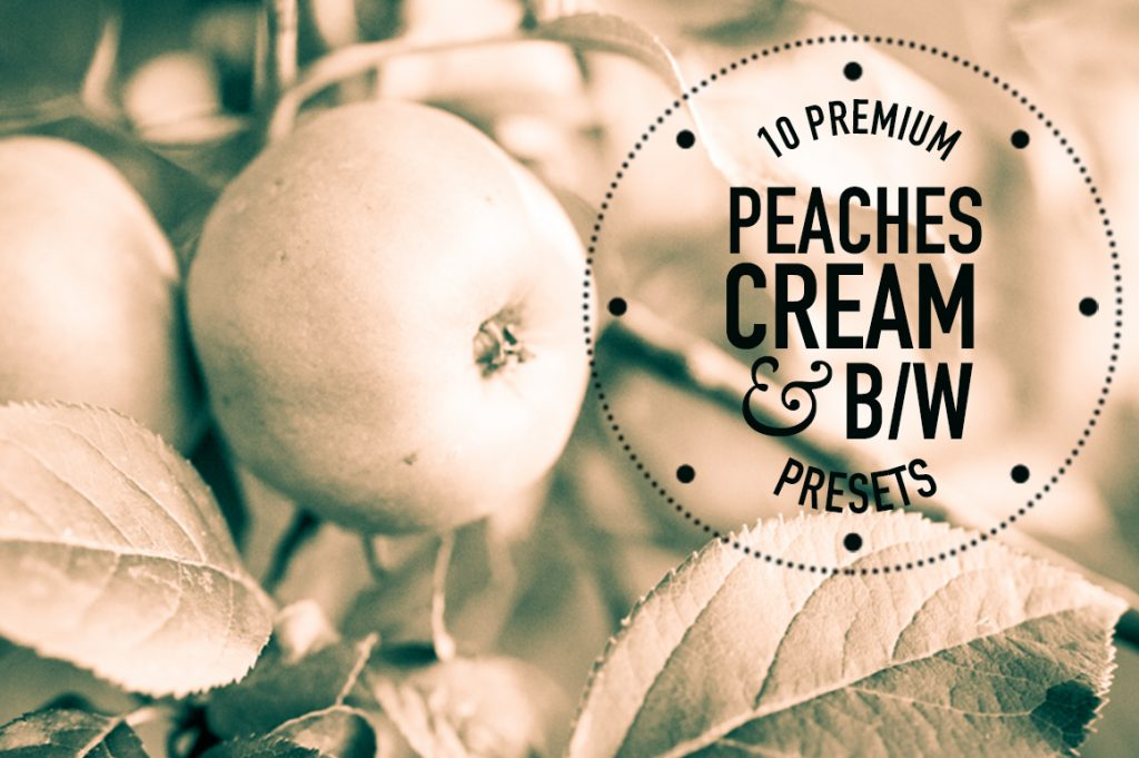 Creative_Market_Main_Image_Peaches_Cream_BW
