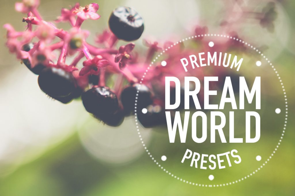 Dreamworld_Creative_Market_Main_Image_Set_1