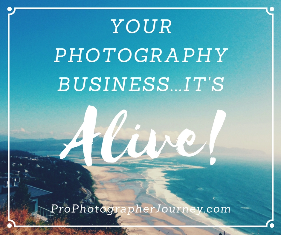 your-photography-business
